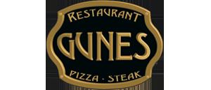 Gunes 300x129
